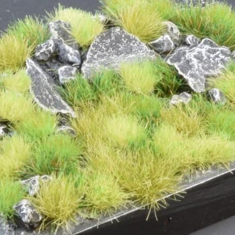 Green Meadow Set (4-6mm)