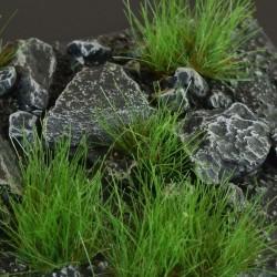 Dry Green(2mm)
